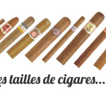 tailles cigares